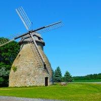 Ветряная мельница Ааспере :: Alex Sanin
