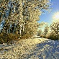Мороз и Солнце.... :: владимир
