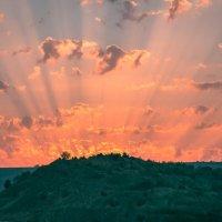 Это, слышь ты, не пожар, это свет от птицы-жар! :: Nyusha