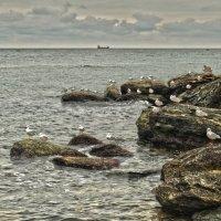 Морские посиделки :: Виктория Бондаренко