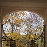 Осенние прогулки :: Marina Mikhailova