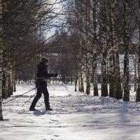 На лыжи :: Александр