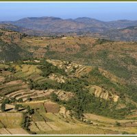 Просторы Эфиопии :: Евгений Печенин