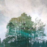 Отражение))) Гляжу в озера синие))) :: Наталия Лисунова