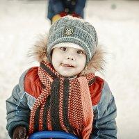 Эх, зима! :: Дмитрий Стёпин