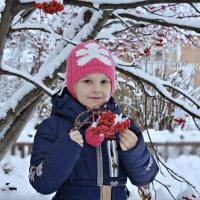 Зимняя рябина :: Юлия Шишаева