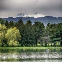 Городское озеро. г. Нальчик. :: Ахмат Б.