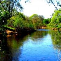 Река Дубна в среднем течении :: alek48s
