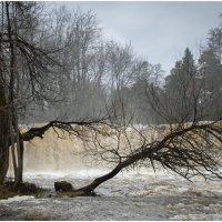 Осенний водопад . Таллин . :: Игорь Абламейко