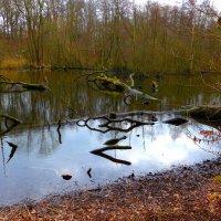 Весенняя река. Отражения :: Nina Yudicheva