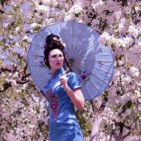 Японская атмосфера :: Райдара Лесная
