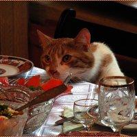 Я не буду есть, я только понюхаю! :: Вера