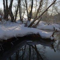 Зимняя речка :: Денис Зорин