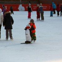 Первый лёд :: Татьяна Нижаде