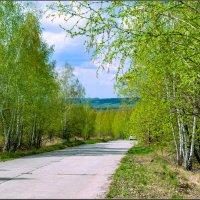 Первая зелень :: Александр Лихачёв