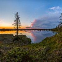 На берегу озера в белые ночи. :: Фёдор. Лашков