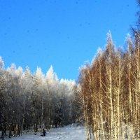 Зима :: Юлия Павлова