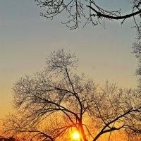 закат :: NюRа;-) Ковылина
