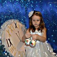 В ожидании нового года :: Юлия Шишаева