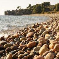 Дикий пляж :: Александр Глазков