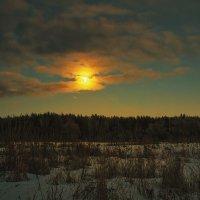 Восход луны над лесом :: Людмила Лебедева
