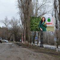 С 8 марта :: Валерий Лазарев