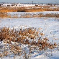 Застывшие озёра,белые снега... :: Александр Попов
