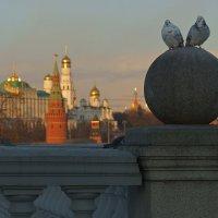 Голуби на фоне Кремля :: Alex