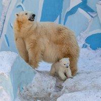 Герда и малыш :: Владимир Габов