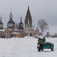 Зеленое на белом. :: Николай Спиридонов