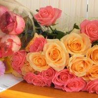 Цветы весны :: nika555nika Ирина