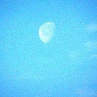 утренняя луна :: Александра Полякова-Костова