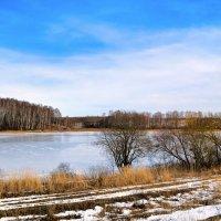 Весенний пейзаж в феврале :: Милешкин Владимир Алексеевич