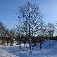 Прощай зима! :: zoja