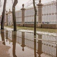 После дождичка, в четверг. :: Наталья Иванова