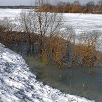 Беспомощно потрескивает лёд... :: Лесо-Вед (Баранов)