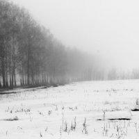 туман :: Tiana Ros