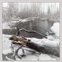Последний снег :: Николай Капранов