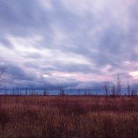 Хмурый закат :: Андрей Нибылица