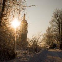 зимнее утро :: Николай Буклинский