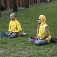 Медитация на городской клумбе-3. :: Руслан Грицунь