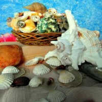 Все сокровища синего моря... :: nadyasilyuk Вознюк
