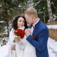 зимняя свадьба :: Ирина