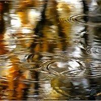 а просто где дождь на Земле :: Владимир Беляев ( GusLjar )