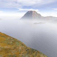 пейзаж в тумане :: linnud