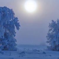 Туманно :: Serz Stepanov