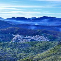 МИНДАЛЬ И ЗИМНИЕ ДЫМЫ. Андалусия. Испания. :: Виталий Половинко