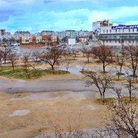 Дождь прошёл :: Анатолий Чикчирный