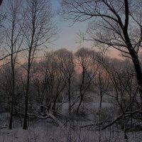 Зимний вечер :: люба