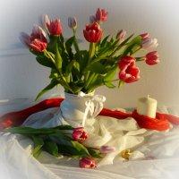 Как люблю красоту и блаженство тюльпанов... :: Galina Dzubina